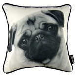 Greyson Place Pug Pillow